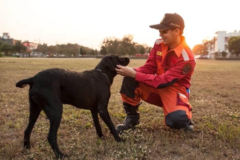 台中市搜救犬。(圖/翻攝林佳龍臉書)